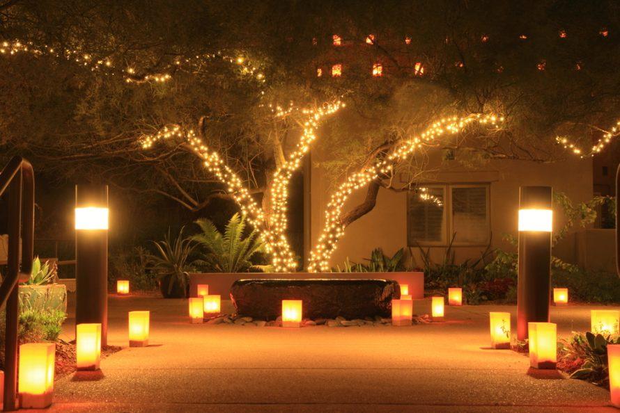 Lichterkette im Baum